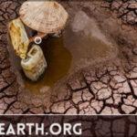 Конкурс фотографии Earth.Org