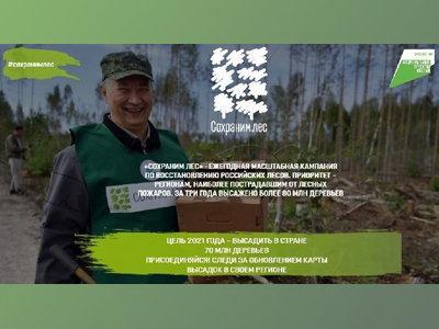 Волонтерская акция Сохраним лес