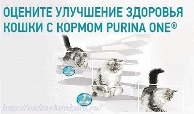 Фотоконкурс Purina One