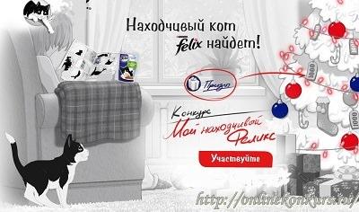 """Творческий конкурс """"Мой находчивый Феликс"""""""