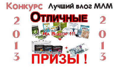 новогодний конкурс на лучший блог МЛМ 2013