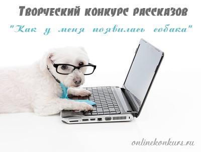 Творческий конкурс рассказов «Как у меня появилась собака»