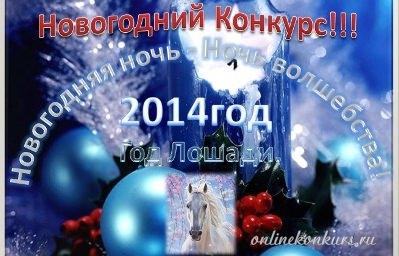 новогодний фотоконкурс 2014