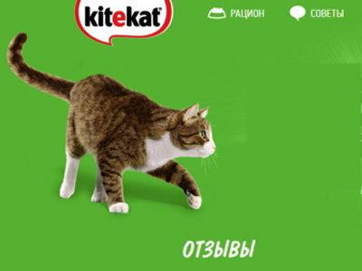 Конкурс «Поделись своими впечатлениями о еде энергичных кошек- корме Kitekat®»