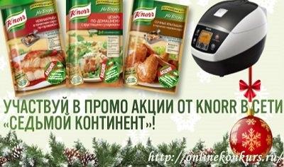 Новогодняя акция Knorr